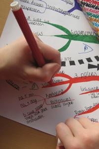 Mindmap huiswerkbegeleiding